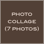 7 Photo Homepage Collage-