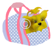 Puppy in a bag Graphic